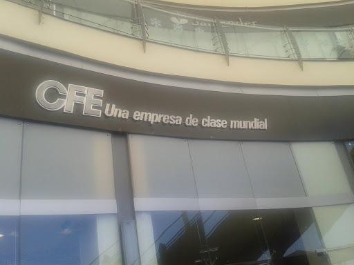 NEGLIGENCIA DE C.F.E.
